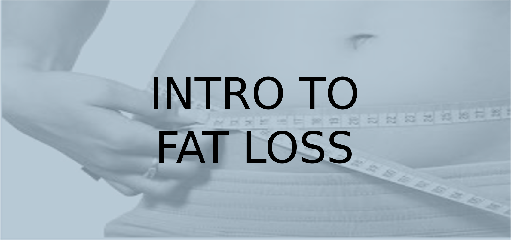 Intro To Fat Loss